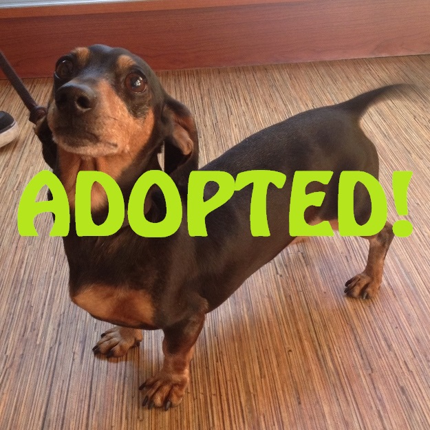 jessie gregory adopted